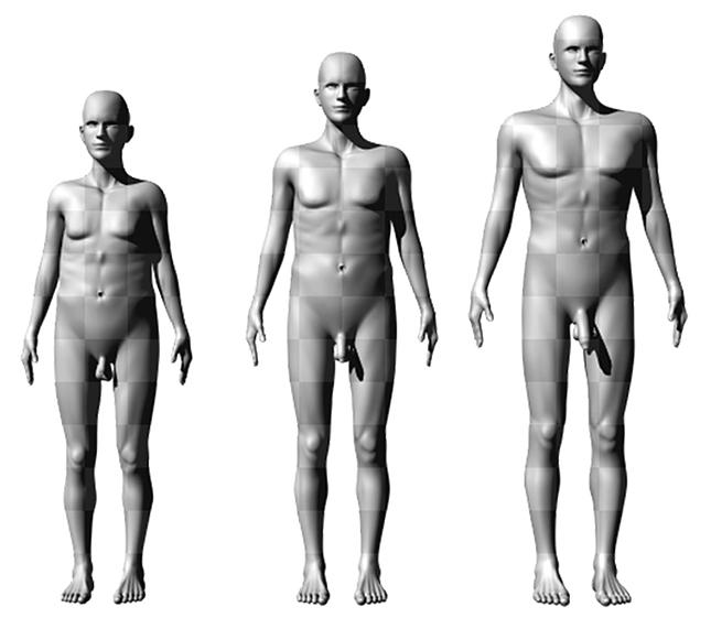 péniszméret és férfi magasság)