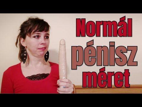 normális felálló péniszméret)