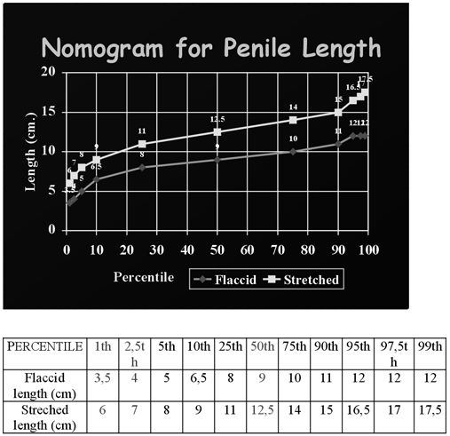 Hosszú vagy széles legyen a pénisz?
