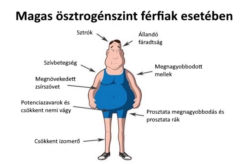 miért van a férfiaknak gyenge erekciója)