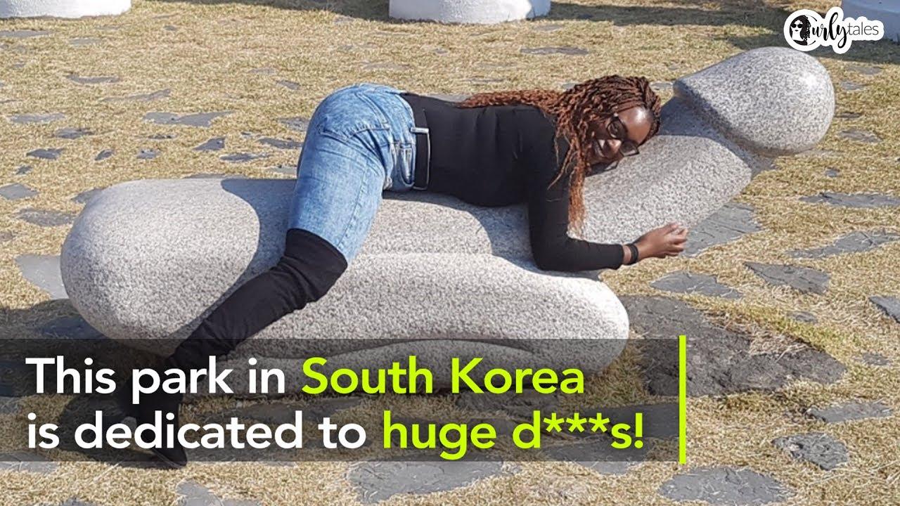 koreai péniszek)