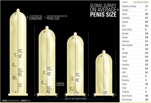 pénisz mérete merevedéssel